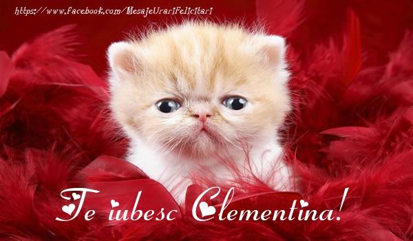 Felicitari de dragoste - Te iubesc Clementina!