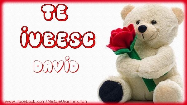 Felicitari de dragoste - Te iubesc David