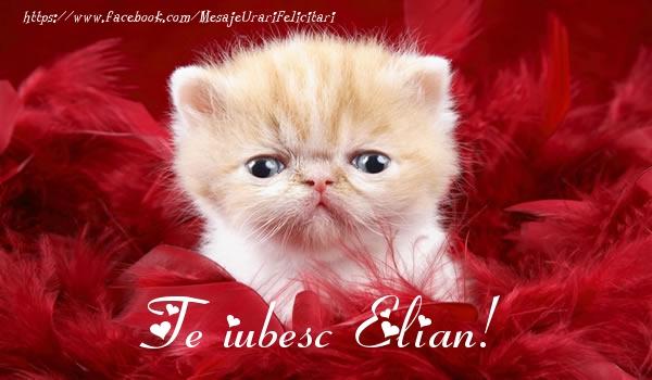 Felicitari de dragoste - Te iubesc Elian!