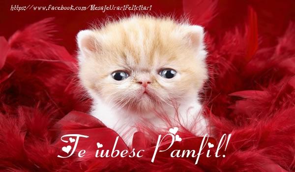 Felicitari de dragoste - Te iubesc Pamfil!