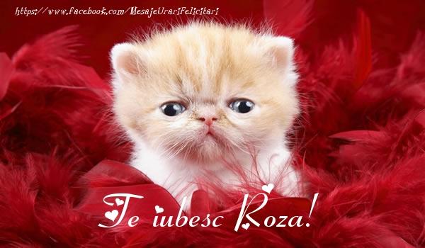 Felicitari de dragoste - Te iubesc Roza!