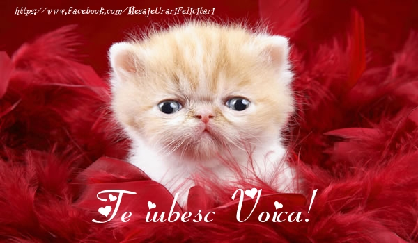 Felicitari de dragoste - Te iubesc Voica!