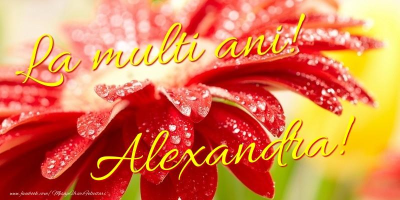 Felicitari de la multi ani - La multi ani! Alexandra