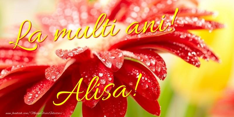 Felicitari de la multi ani - La multi ani! Alisa