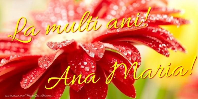 Felicitari de la multi ani - La multi ani! Ana Maria