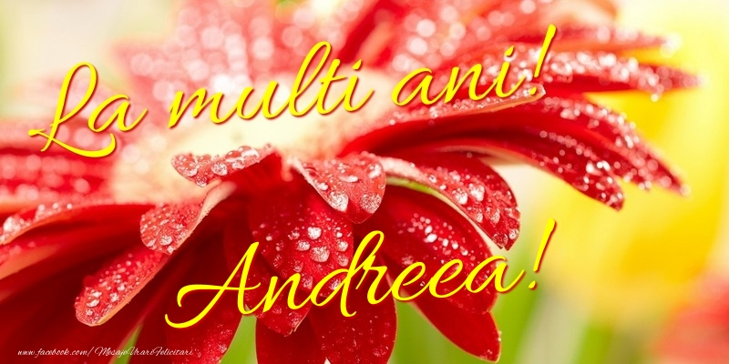 Felicitari de la multi ani - La multi ani! Andreea