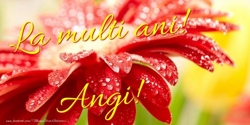Felicitari de la multi ani - La multi ani! Angi