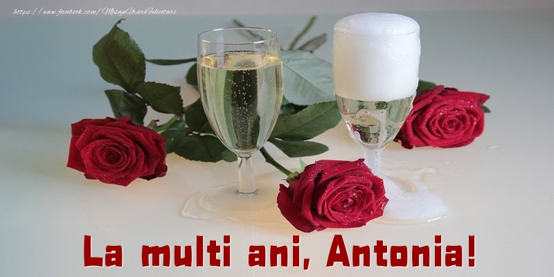 Felicitari de la multi ani - La multi ani, Antonia!
