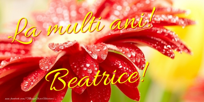 Felicitari de la multi ani - La multi ani! Beatrice