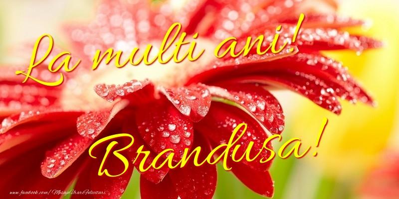 Felicitari de la multi ani - La multi ani! Brandusa