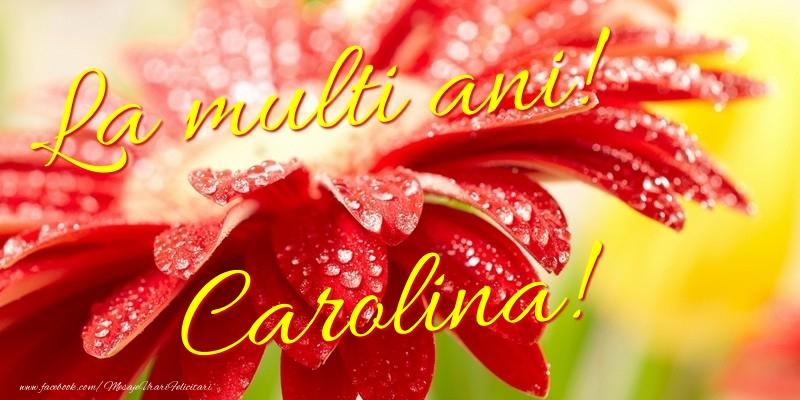 Felicitari de la multi ani - La multi ani! Carolina