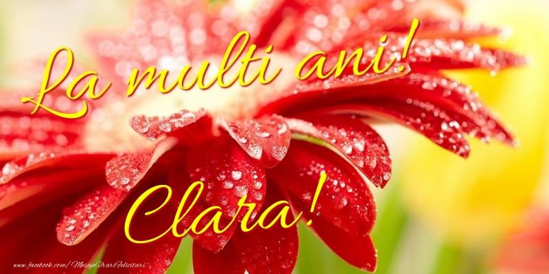 Felicitari de la multi ani - La multi ani! Clara