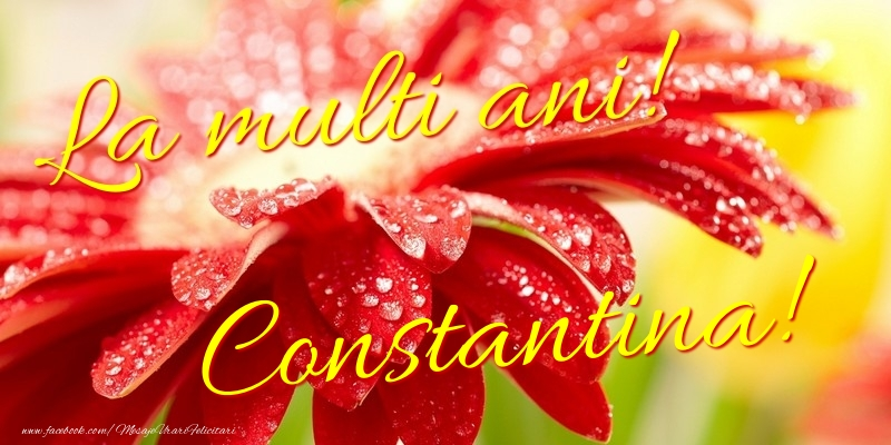 Felicitari de la multi ani - La multi ani! Constantina