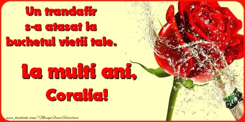 Felicitari de la multi ani - Un trandafir s-a atasat la buchetul vietii tale. Coralia