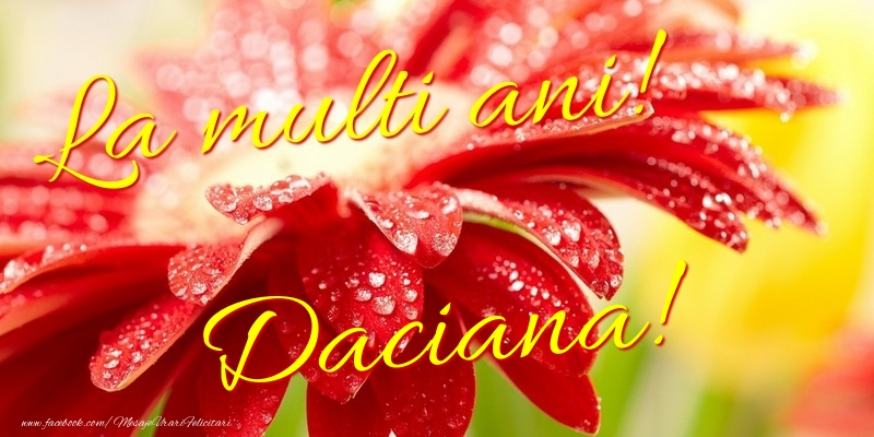 Felicitari de la multi ani - La multi ani! Daciana
