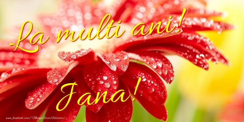Felicitari de la multi ani - La multi ani! Jana