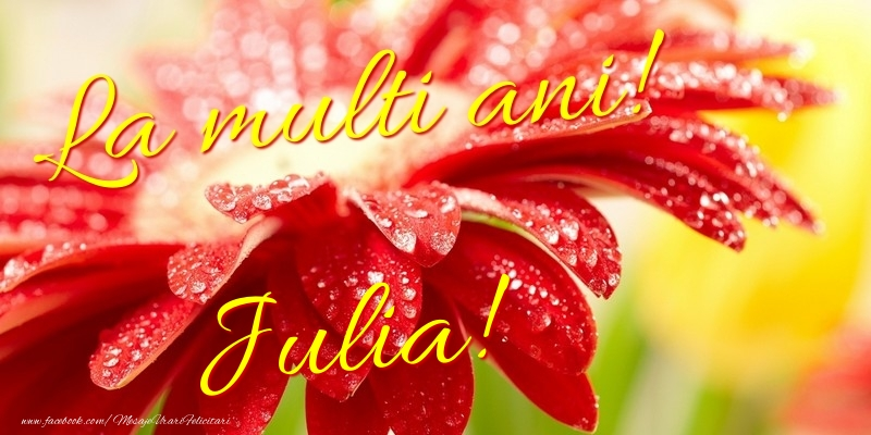 Felicitari de la multi ani - La multi ani! Julia