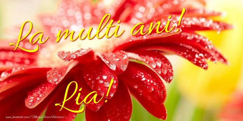 Felicitari de la multi ani - La multi ani! Lia