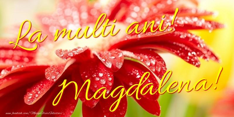 Felicitari de la multi ani - La multi ani! Magdalena