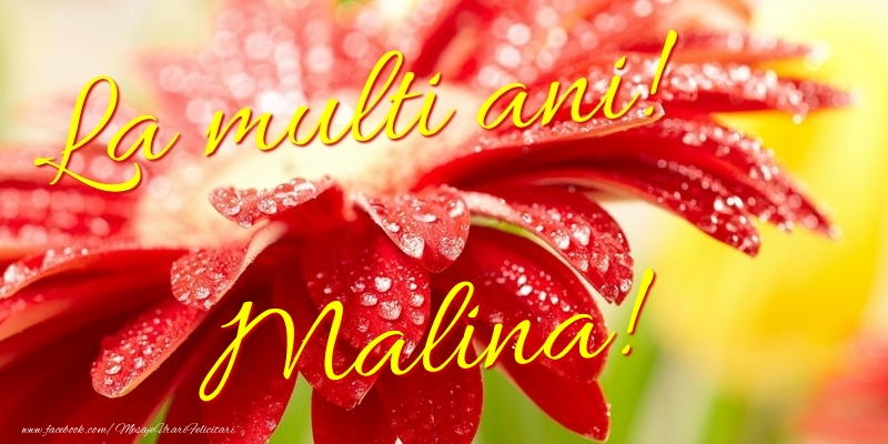 Felicitari de la multi ani - La multi ani! Malina