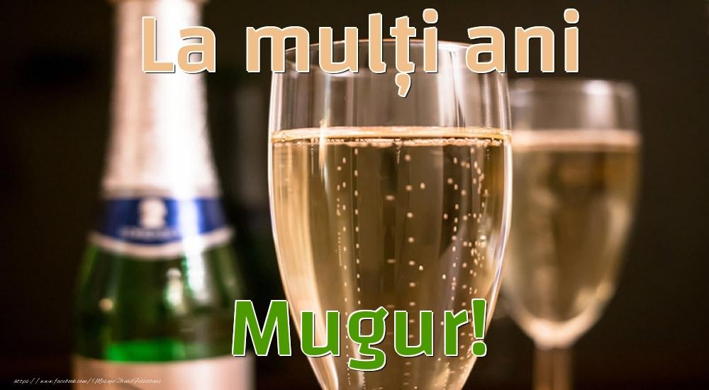 Felicitari de la multi ani - La mulți ani Mugur!