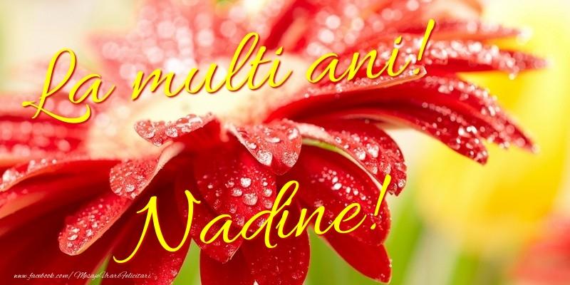 Felicitari de la multi ani - La multi ani! Nadine