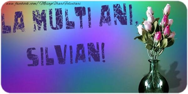 Felicitari de la multi ani - La multi ani, Silvian