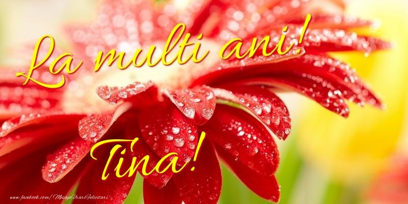 Felicitari de la multi ani - La multi ani! Tina