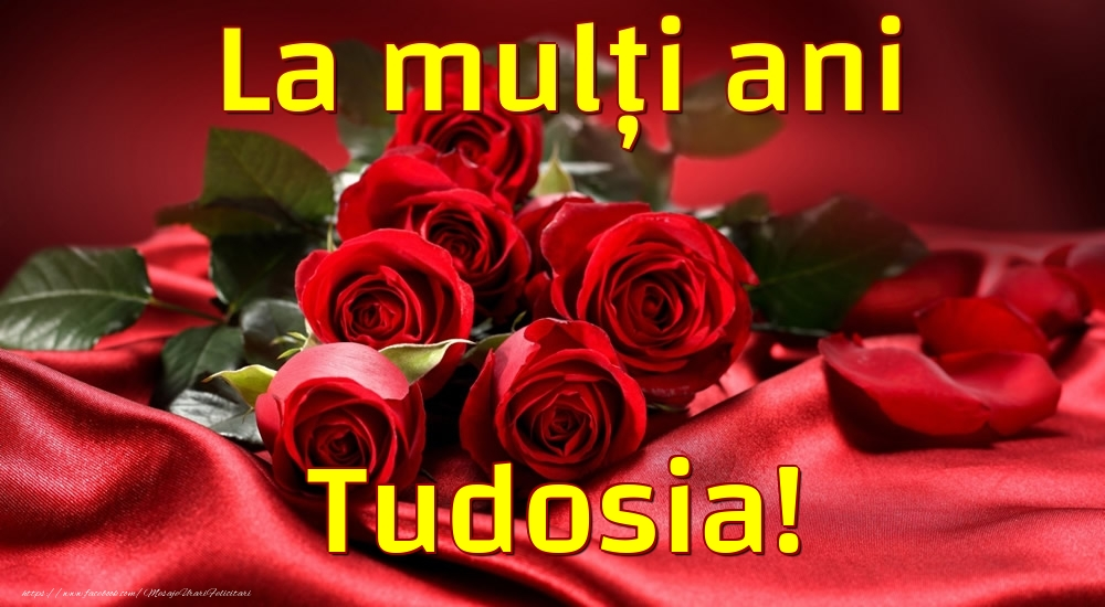 Felicitari de la multi ani - La mulți ani Tudosia!