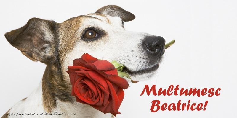Felicitari de multumire - Multumesc Beatrice!