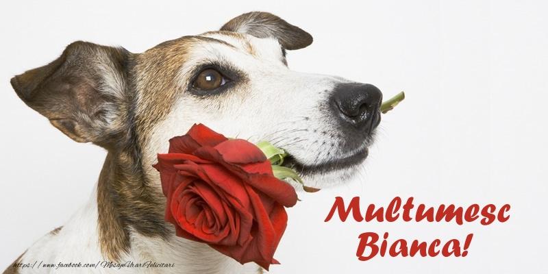 Felicitari de multumire - Multumesc Bianca!