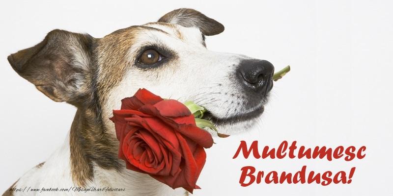 Felicitari de multumire - Multumesc Brandusa!