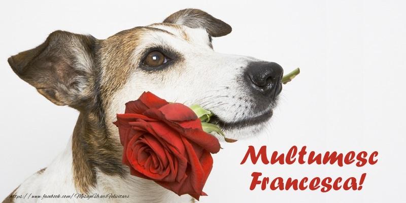 Felicitari de multumire - Multumesc Francesca!