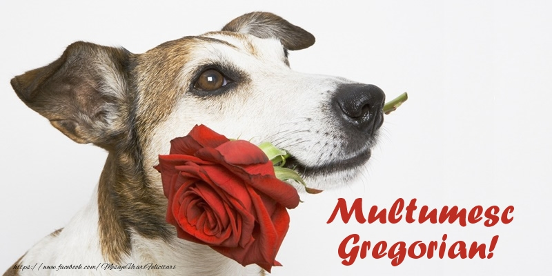 Felicitari de multumire - Multumesc Gregorian!