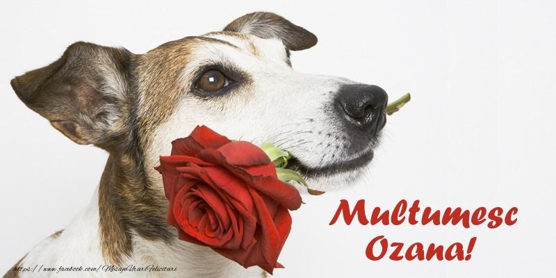 Felicitari de multumire - Multumesc Ozana!