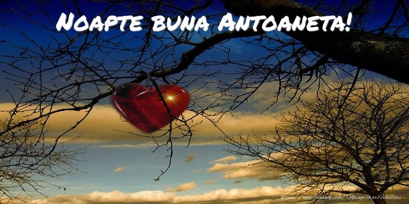 Felicitari de noapte buna - Noapte buna Antoaneta!