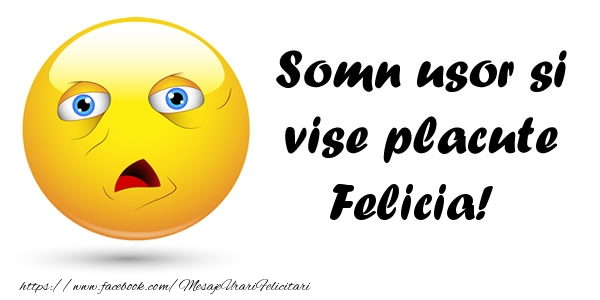 Felicitari de noapte buna - Somn usor si vise placute Felicia!