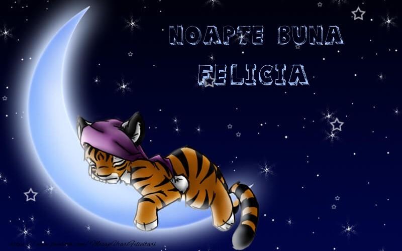 Felicitari de noapte buna - Noapte buna Felicia