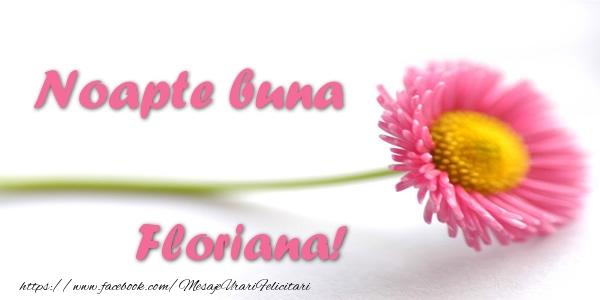 Felicitari de noapte buna - Noapte buna Floriana!