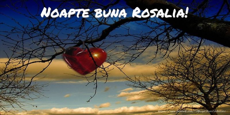 Felicitari de noapte buna - Noapte buna Rosalia!