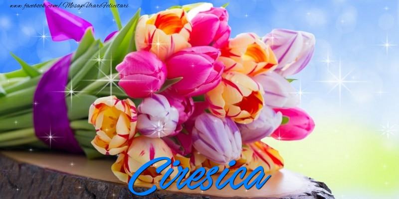 Felicitari de prietenie - Ciresica