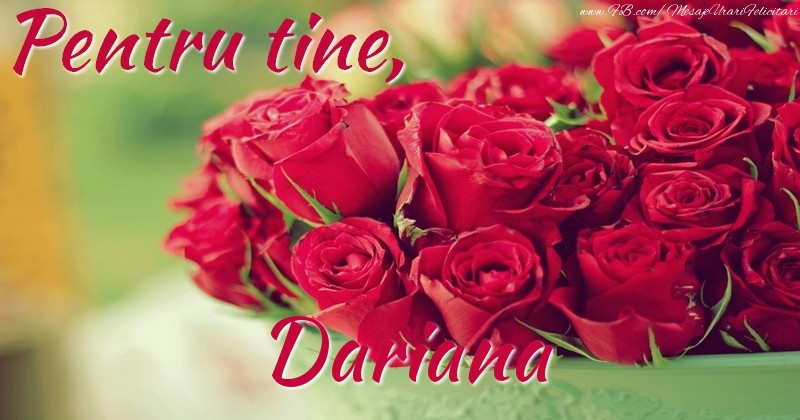 Felicitari de prietenie - Pentru tine, Dariana