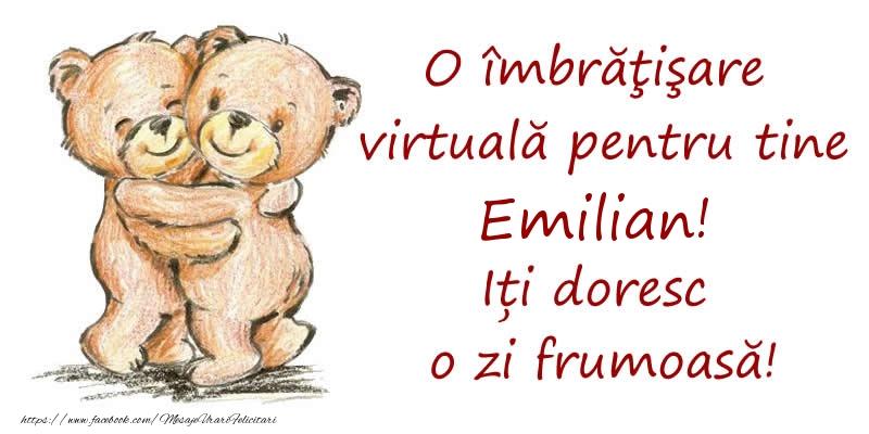 Felicitari de prietenie - O îmbrăţişare virtuală pentru tine Emilian. Iți doresc o zi frumoasă!
