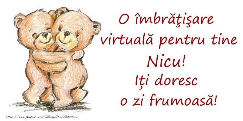 Felicitari de prietenie - O îmbrăţişare virtuală pentru tine Nicu. Iți doresc o zi frumoasă!