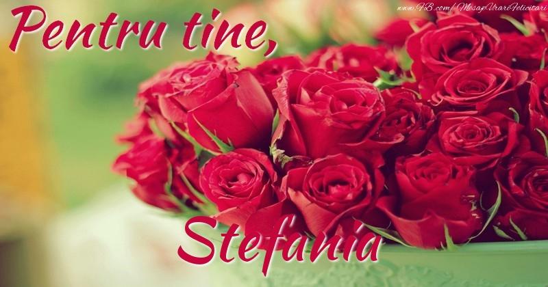 Felicitari de prietenie - Pentru tine, Stefania