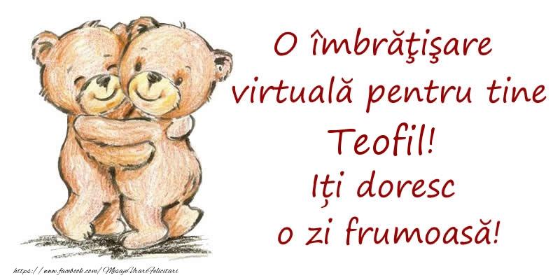 Felicitari de prietenie - O îmbrăţişare virtuală pentru tine Teofil. Iți doresc o zi frumoasă!