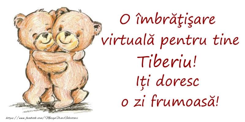 Felicitari de prietenie - O îmbrăţişare virtuală pentru tine Tiberiu. Iți doresc o zi frumoasă!