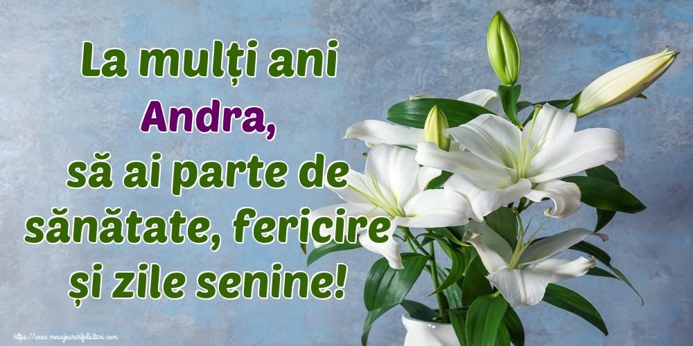 Felicitari de zi de nastere - La mulți ani Andra, să ai parte de sănătate, fericire și zile senine!
