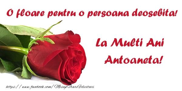 Felicitari de zi de nastere - O floare pentru o persoana deosebita! La multi ani Antoaneta!