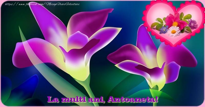 Felicitari de zi de nastere - La multi ani Antoaneta